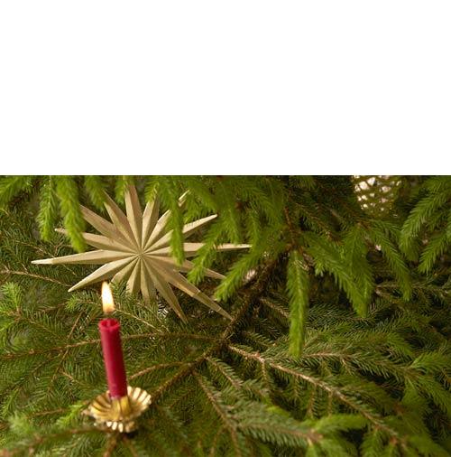 Echte Kerzen für den Weihnachtsbaum