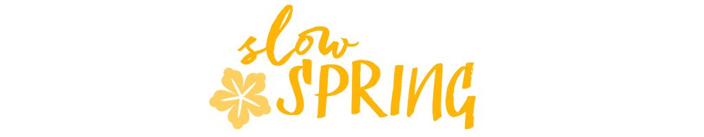 hessnatur SlowSpring Blogreihe Logo