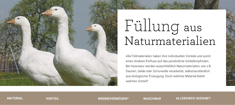 bettdecken mit bio f llung hessnatur deutschland. Black Bedroom Furniture Sets. Home Design Ideas